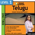 Learn to speak Telugu with this online class.