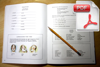 Instant Immersion's Workbooks are the best way to learn a new language
